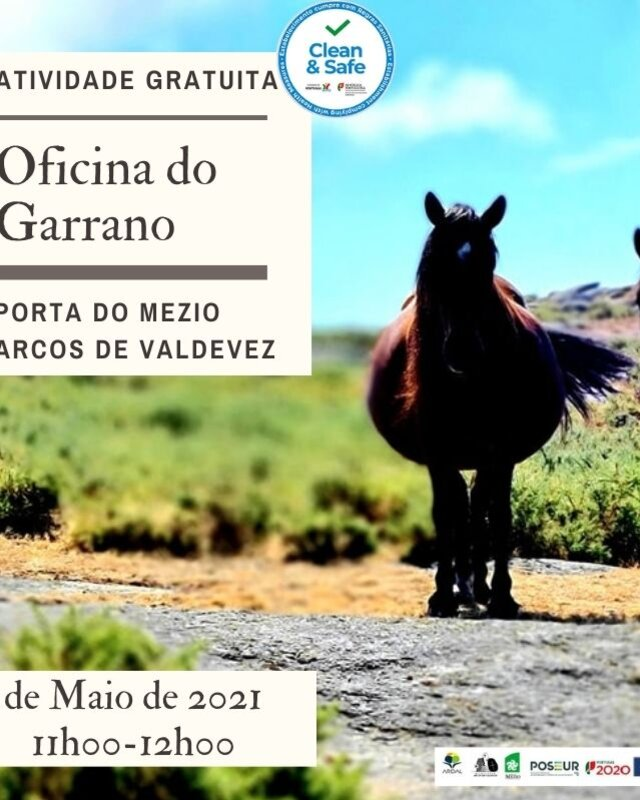 oficina_do_garrano_maio