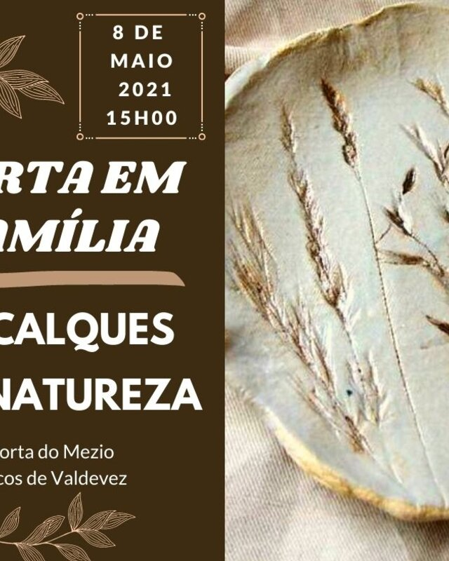 decalques_na_natureza